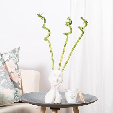 Set Bambù Elegante