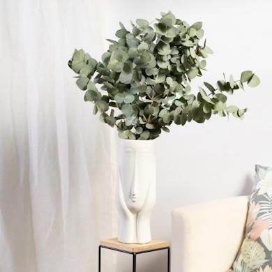 Set Seattle avec Eucalyptus