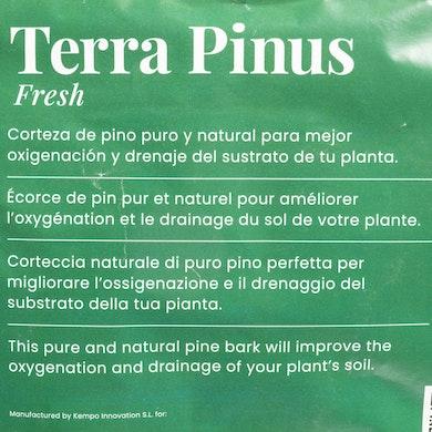 Terra Pinus