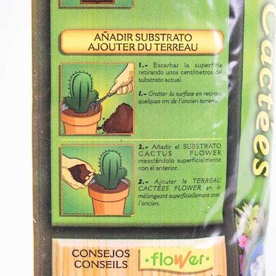 Substrat pour Cactus et Succulentes