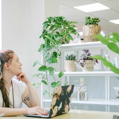 Set Easy Office