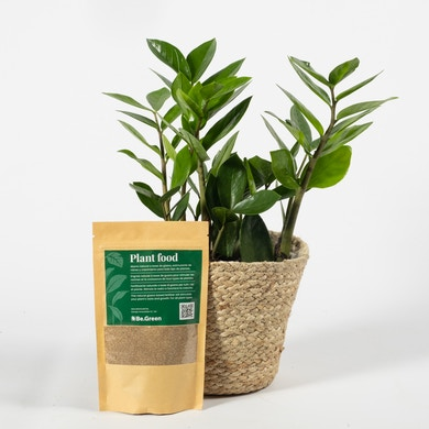 Fertilizante Plant Food